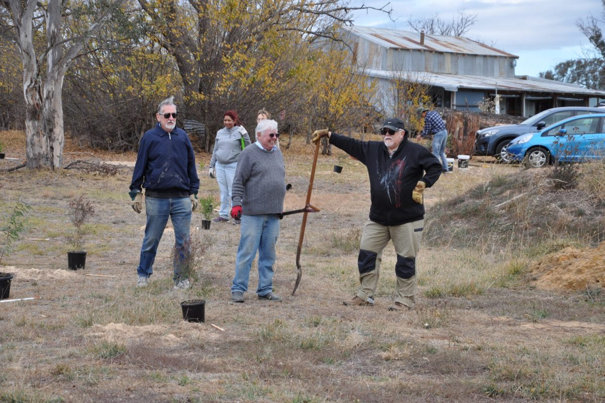 Local Rotarians making a difference, tree by tree