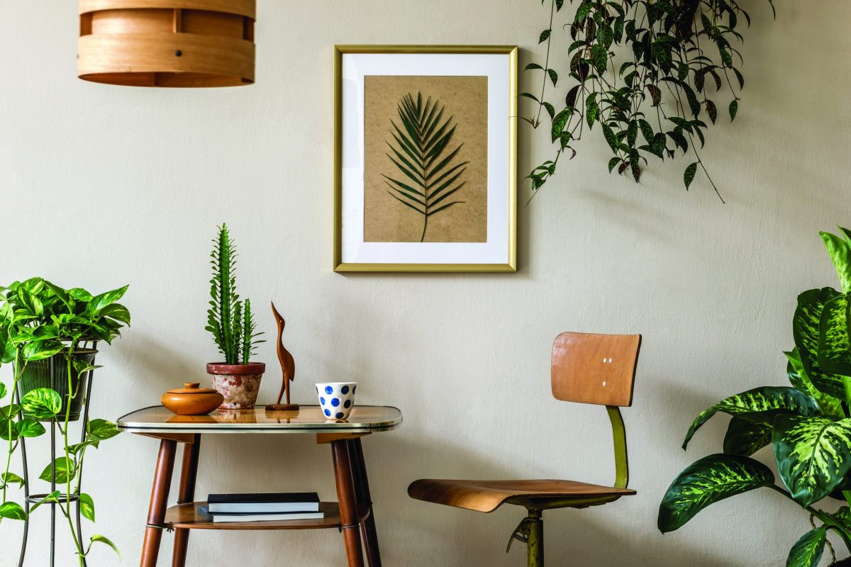 Eco Décor:  How to furnish your home sustainably